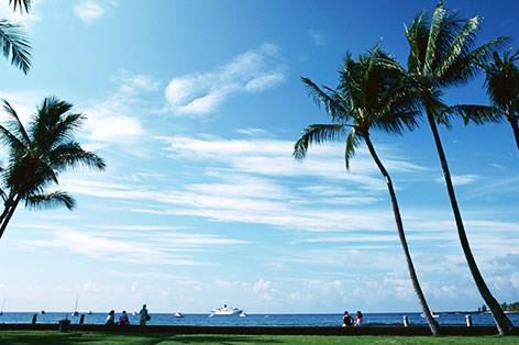ハワイ島(イメージ)